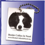 Dog Rescue custom keychain