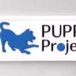 custom made PVC label